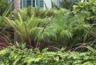 Adelaide Park Tropical landscaping 2