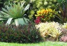 Adelaide Park Tropical landscaping 9
